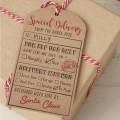 Vintage Noel Luggage Tag - Special Delivery