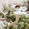 Beautiful Botanics Table Numbers - Wooden 1-12